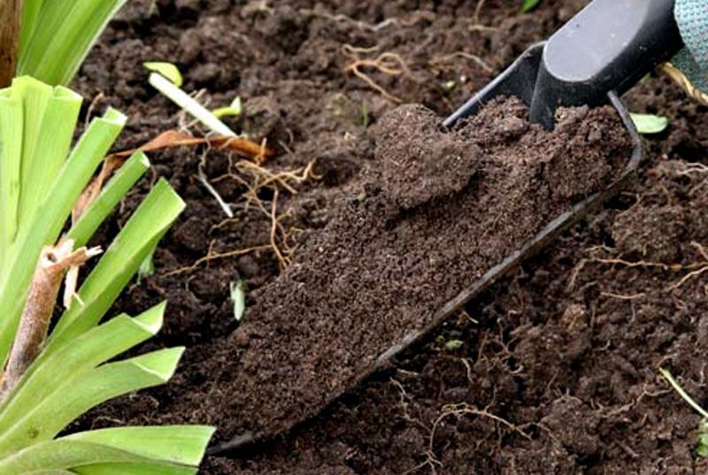 Смеси для растений