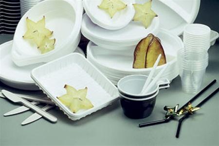 В чем же преимущества использования одноразовой посуды на даче или пикнике