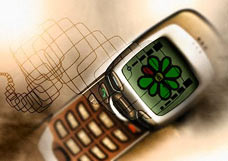 Как отправить SMS с мобильника на E-Mail и ICQ