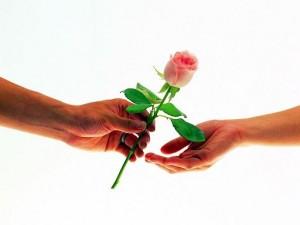 Узнать какие цветы нравятся девушке
