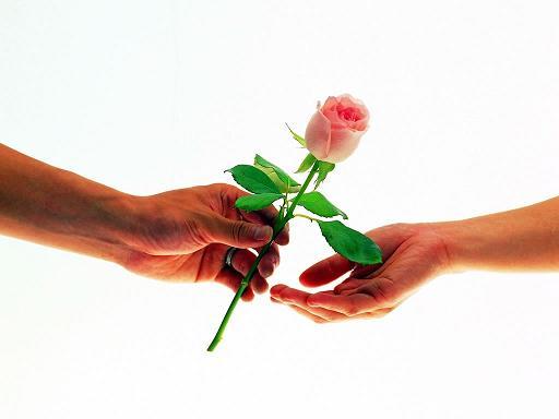 Как узнать какие цветы нравятся девушке