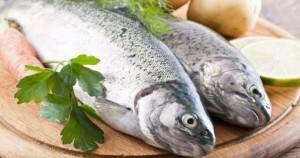 правильно выбрать рыбу