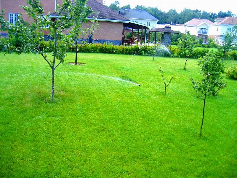 Как устроить автоматический полив сада