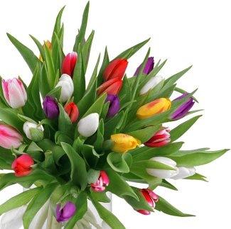 Какой букет цветов подарить на 8 марта