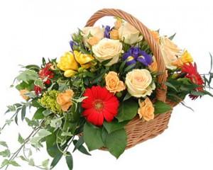 Какие цветы выбрать на 8 марта