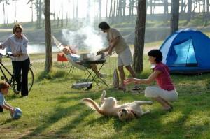 выбрать палатку для отдыха