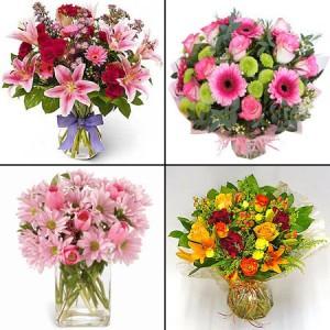 Какие цветы лучше подарить девушке