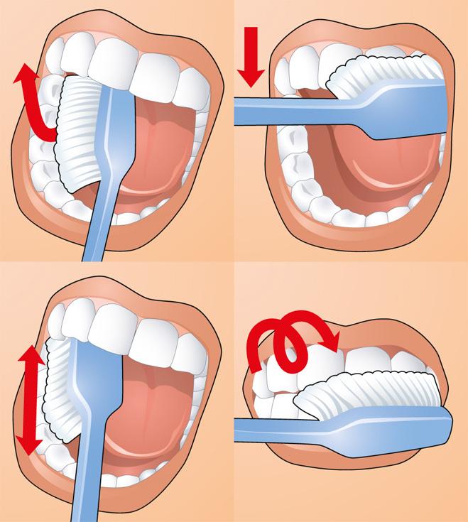 Десять правил чистки зубов