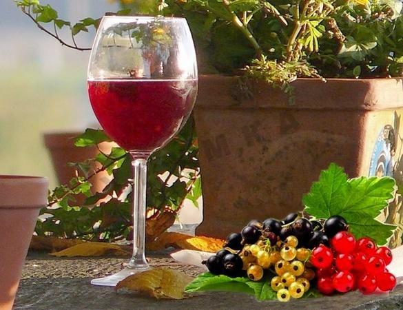 Советы для приготовления домашнего вина