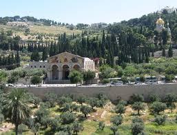 фасад базилика