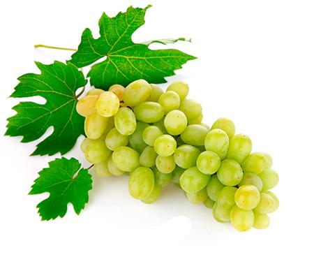 Виноград заменит многие лекарства