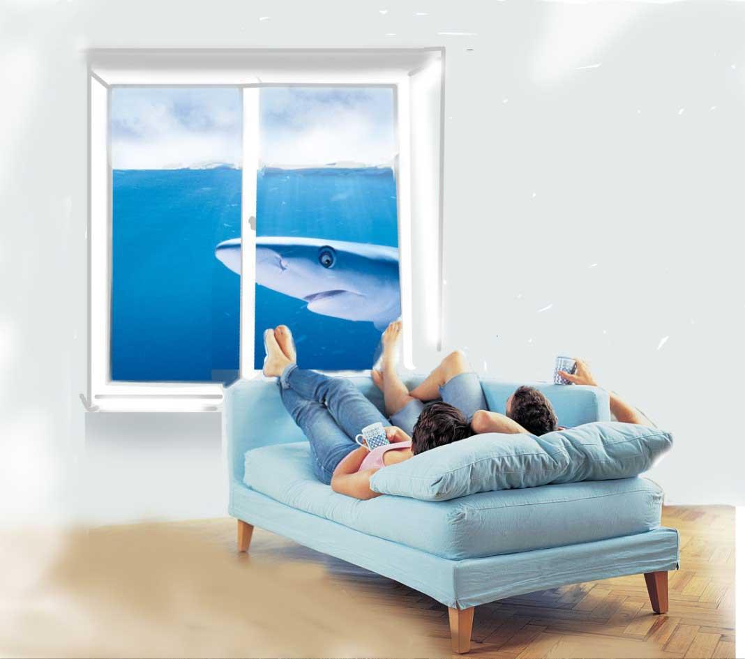 Выбор и размещение окон в вашем доме
