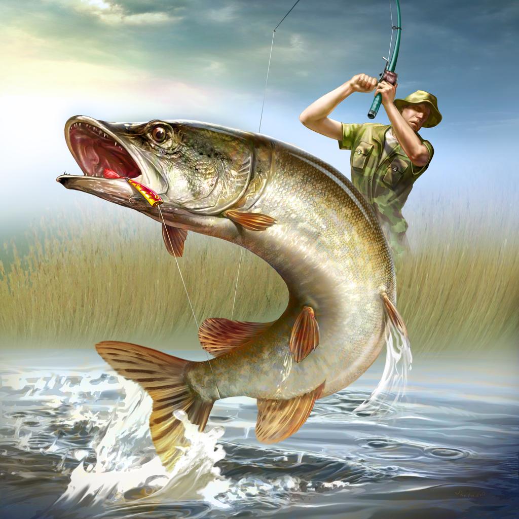 Прелести летней рыбалки