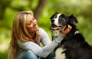 советы для владельцев собак